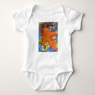 Body Para Bebê Do outono da folha fim acima