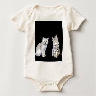 Body Para Bebê Dois gatos britânicos do cabelo curto no fundo