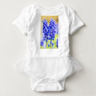 Body Para Bebê Dois jacintos de uva azuis no primavera
