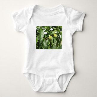 Body Para Bebê Dois pêssegos verdes unripe que penduram em uma