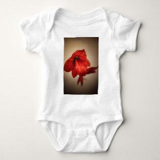 Body Para Bebê Duas flores vermelhas do amaryllis