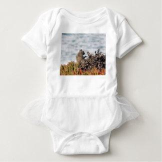 Body Para Bebê Esquilo pequeno