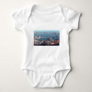 Body Para Bebê Fechamento na paisagem da fantasia