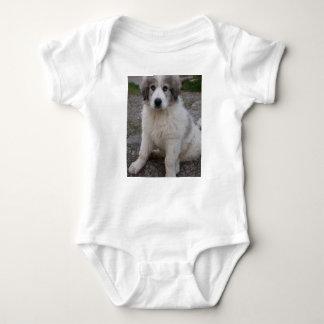 Body Para Bebê filhote de cachorro de grandes pyrenees