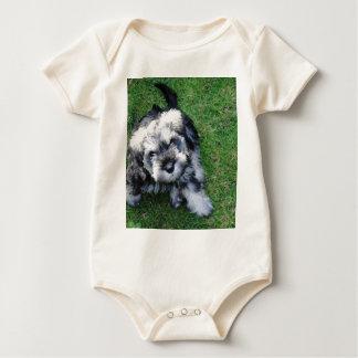 Body Para Bebê Filhote de cachorro do Schnauzer diminuto