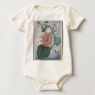 Body Para Bebê Flor da paixão