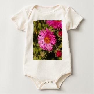Body Para Bebê Flor de um áster de Nova Inglaterra