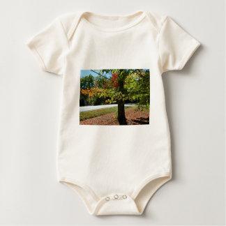 Body Para Bebê Folhas de outono em Maine