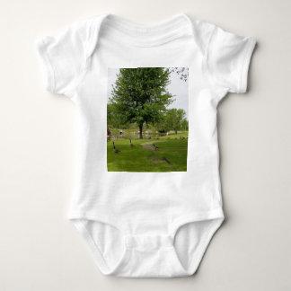 Body Para Bebê Gansos