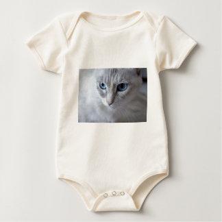 Body Para Bebê Gato de Kisa dos olhos azuis