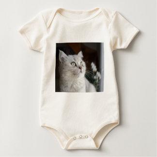 Body Para Bebê Gato dos animais felino