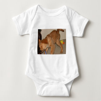Body Para Bebê Golden retriever que agita o fora