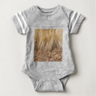 Body Para Bebê iDetail de um campo do teff durante a colheita