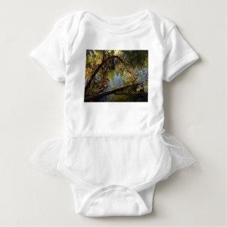Body Para Bebê Lago 4 park da garganta de Franklin