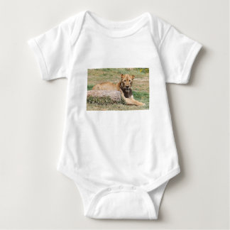 Body Para Bebê Leão