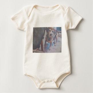Body Para Bebê Lebreiro curioso