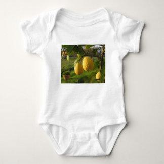 Body Para Bebê Limões amarelos que crescem na árvore no por do