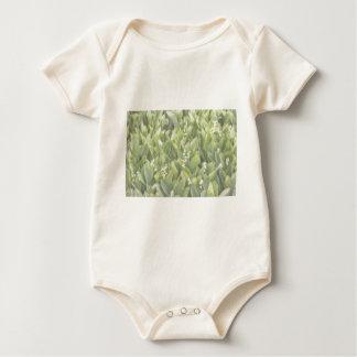 Body Para Bebê Lírio do remendo da flor do vale na névoa