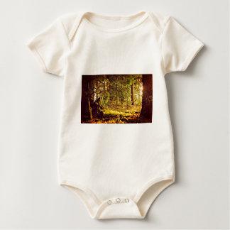Body Para Bebê Luz na floresta