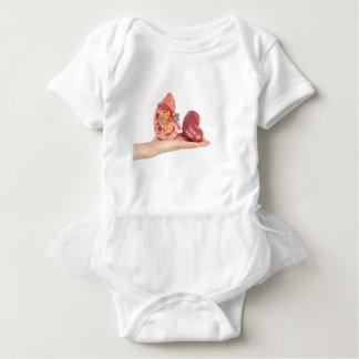 Body Para Bebê Mão lisa que mostra o rim humano modelo