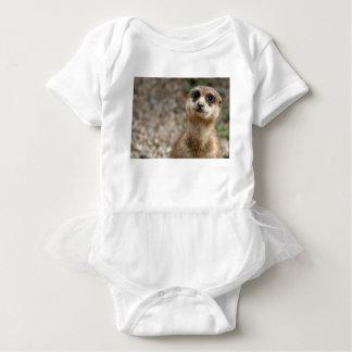 Body Para Bebê Meerkat Grande-Eyed bonito
