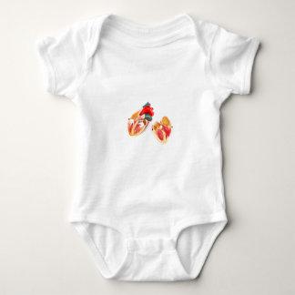 Body Para Bebê Modelo humano do coração isolado no fundo branco