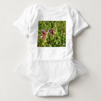 Body Para Bebê Morto-provocação roxa (purpureum do Lamium) no