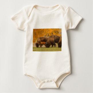 Body Para Bebê Nação da família do bisonte