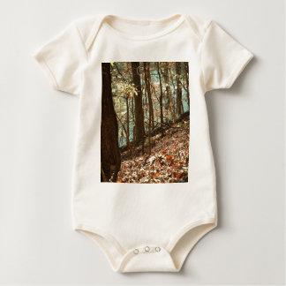 Body Para Bebê Nas madeiras
