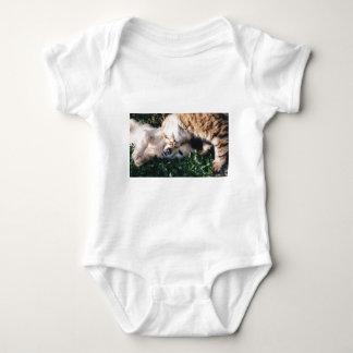 Body Para Bebê O cão ama o gatinho