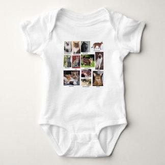 Body Para Bebê O gato produz fotos a cores completos