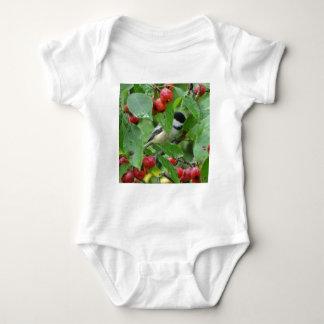 Body Para Bebê Onde está o Chickadee?