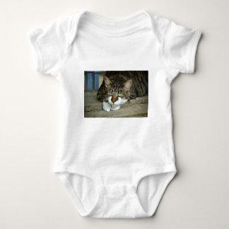 Body Para Bebê Os olhos de gato