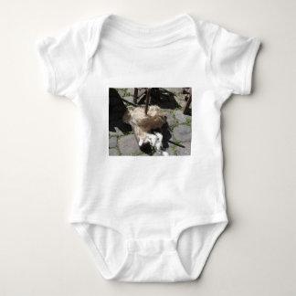 Body Para Bebê Os rolos macios das lãs chamaram vagabundagemes ou