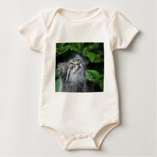 Body Para Bebê pallas-gato