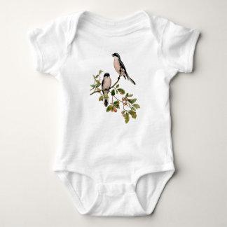 Body Para Bebê Pássaros bonito do vintage em um ramo