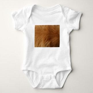 Body Para Bebê Pele do golden retriever