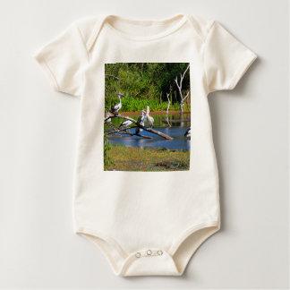 Body Para Bebê Pelicanos nos pantanais, interior Austrália