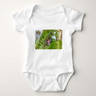 Body Para Bebê Plantação de banana na ilha macilento de Sok Kwu