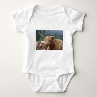 Body Para Bebê retrato do gado das montanhas