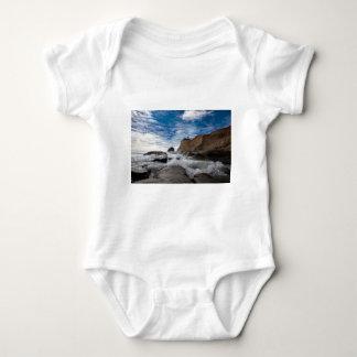 Body Para Bebê Rocha do monte de feno na costa EUA de Kiwanda