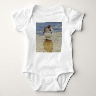 Body Para Bebê Shorebird novo curioso que explora