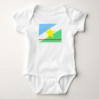 Body Para Bebê Símbolo da província da região de Brasil da