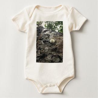 Body Para Bebê Torre do sicômoro
