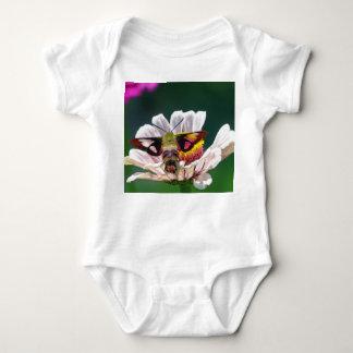 Body Para Bebê Traça de colibri