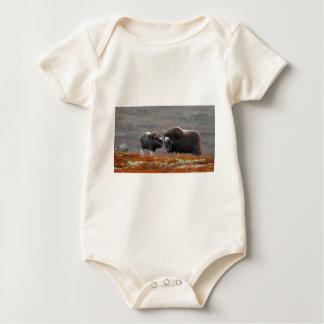 Body Para Bebê Um boi e uma vitela de Musk