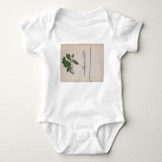 Body Para Bebê Uma planta de rabanete, uma semente, e uma flor