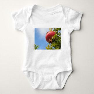 Body Para Bebê Única fruta vermelha da romã na árvore nas folhas