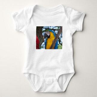 Body Para Bebê Verde amarelo e Macaw tropical azul