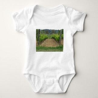 Body Para Bebê Vinhedo no primavera. Toscânia, Italia